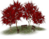TEF AUTUM RED TREE/BENCH