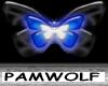 Midnightglow butterfly