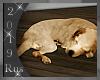 Rus: Sleeping dog