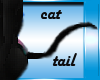 {K} Black cat tail