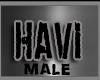 Custom Havi Collar -M-