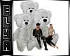 Bear gray sofa friends