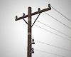 Single Telegraph Pole