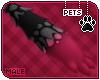 [Pets] Ziro   paws v1