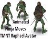 Oto's TMNT Rapahel Avi