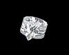 SL Engagement Ring M