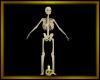 Skeleton Guard Light