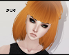 Tayla|Pumpkin
