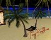 hammock/hamac paradise