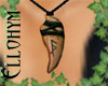~E- Richard's Necklace