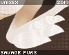 . Fennec | tufts