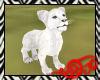 Safari White Lion Cub