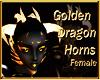ECC F/GoldDrag Horns