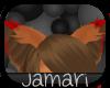 [J] ~ Ziro Ears