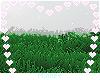 ♡ Grass