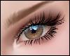 Gigi Eyelashes