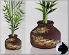 !Bamboo Goldleaf Pot