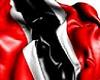 Trini x Vb 2020