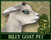 Billy Goat White