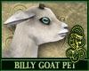Billy Goat White