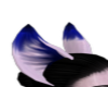 blue&white ears