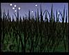 LC Animated Night Grass