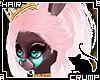 [C] Royal V.1 Hair