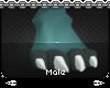 [M] Mia M Paws