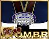 QMBR Award Mentor 2
