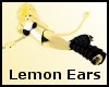 Lemon Lion Ears