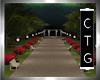 CTG EVENING STROLL PARK
