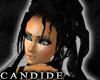 [V4NY] !Candide! MNight