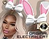 ! EC Doll Bunny DRV