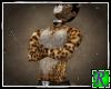 ~JRB~ Tangy Cat Bundle