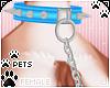 [Pets]LeashCollar | blue