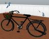 Rave Bike