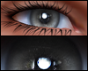 Male Eyes Gray