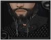 [Pablo] Beard Add-on 2