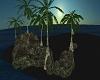 Black Sands Island (sm)