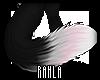 Rayn Tail V.2