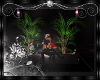 [SAS] Loca Plant w. Kiss