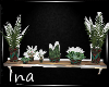{Ina}-VH Wall Plants
