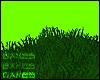 B♥ GRASS #1