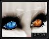G; Maux M/F.Eyes