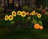 Fall Flowers w/Pumpkins