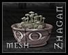 [Z] der.Mushrooms V2