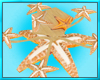 Star Fish Table