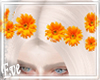 c Spring Hairclips