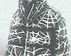 ĸo. Baggy Spider