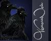 VN Tranquil Ravens